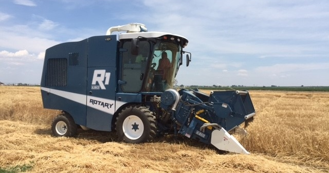 R1 Rotary Plot Combine Breaks Bread with Wheat Researchers